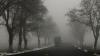 TIR-ul din ceaţă. INCREDIBIL ce poate face un şofer în condiţii meteo nefavorabile