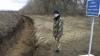 TENSIUNE ÎN UCRAINA: De-a lungul frontierei cu Rusia se sapă şanţuri, iar fiul lui Ianukovici a fost dat în căutare