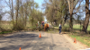 Lucrări de primăvară în Moldova! Drumarii au doborât un copac blocând circulaţia pe traseul Bulboaca - Anenii Noi  (VIDEO)