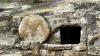 Ziua tăcerii, pregăteşte inimile creştinilor pentru bucuria marii Învieri