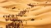 Care sportivi şi-au lăsat în urmă adversarii după a doua etapă a cursei din Maroc