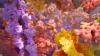 Călătorie INEDITĂ în interiroul celulelor umane. Două animaţii dezvăluie secretele vieţii (VIDEO)
