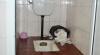 GALERIE FOTO cu toaletele din spitalele moldoveneşti. Imaginile sunt deplorabile