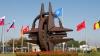 (VIDEO) Discuţii aprinse la Fabrika! Ce cred parlamentarii despre o eventuală aderare a Republicii Moldova la NATO
