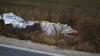 MOARTE BIZARĂ în capitală. Un student a fost găsit mort într-o groapă, fiind acoperit cu o piatră (VIDEO)