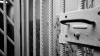 Percheziții în mai multe penitenciare din țară. Gardienii au descoperit surprize în celulele deținuților (FOTO)