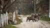 Locuitorii unui sat din Glodeni doresc să revină la vechea denumire a localităţii. IATĂ cum se va numi aceasta