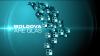 """""""Moldova are Glas"""" în raionul Taraclia. Oamenii îşi doresc drumuri mai bune şi acces la reţelele de Internet"""