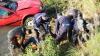 Doi pasageri s-au înecat, după ce automobilul în care mergeau a derapat în Nistru (VIDEO/FOTO)