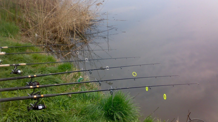Pescuit ilegal la frontiera moldo-română. Cum au fost pedepsiţi şase locuitori din Slobozia Mare