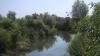 Scandal pe malurile Bîcului! Lucrările de curăţare a râului au fost blocate de ecologişti (VIDEO)