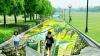 Record mondial în China: A fost inaugurată cea mai lungă lucrare de artă stradală 3D din lume