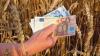 Afaceri de succes, pe bani europeni. Iată în ce investesc unii moldoveni fondurile externe