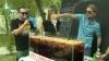Record pentru Republica Moldova. Zeci de tineri au preparat peste 100 de litri de cocktail Sangria