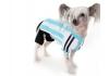 Câinii din Argentina sunt gata de Cupa Mondială! Patrupezii vor putea purta modele de tricouri ai naţionalei argentiniene