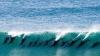 VIRAL PE INTERNET: Cum fac surf şi se joacă un grup de delfini