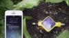 Invenţie revoluţionară în domeniul agriculturii! Un dispozitiv inteligent îţi va spune totul despre grădina ta (VIDEO)