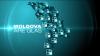 ''Moldova are Glas'', la Taraclia: Locuitorii comunei Salcia riscă să rămână fără unica sursă de venit (VIDEO)