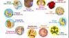 Horoscop: Cum vor influenţa planetele asupra vieţii pământenilor