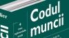 Care sunt cele mai accesate acte normative de către moldoveni pe Internet