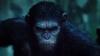 Filmul Dawn of the Planet of the Apes rămâne şi săptămâna aceasta lider în box office-ul nord-american