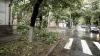 Crengi rupte şi copaci dărâmaţi! Aşa arată oraşul Cahul după o ploaie torenţială (VIDEO)