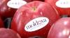 Rusia vrea să aplice taxe pentru importul mai multor produse moldovenești