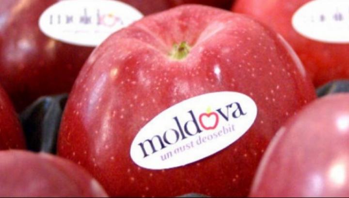 OFICIAL! Rusia a sistat toate importurile de fructe din Moldova