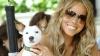 """Cântăreaţa americană Mariah Carey îşi trimite cei opt căţei într-o vacanţă de """"lux"""""""