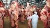 Rosselhoznadzor înăspreşte controalele pentru carnea importată din Moldova