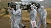 Ebola nu se opreşte să omoare. Organizaţia Mondială a Sănătăţii a emis un bilanţ actualizat al consecinţelor epidemiei