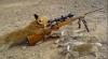 Belea pe capul vulpilor din Moldova. Vânătorii au voie să le ucidă nelimitat
