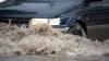 Cu ce impresii au rămas şoferii din Chişinău după ploaia de azi