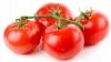 Savanţii moldoveni au creat noi soiuri de tomate. Plantele sunt rezistente la îngheţ, secetă şi boli