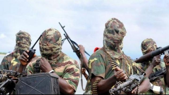 85 de nigerieni au fost salvaţi de către militari din Ciad de gruparea Boko Haram