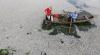 Dezastru ecologic în Mexic: Cel puțin 50 de tone de pește mort a fost colectat dintr-un lac