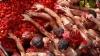 Bătaie cu roşii la Amsterdam! Sute de oameni au protestat faţă de embargoul impus de Rusia