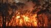Incendiu de vegetaţie în California.  Autorităţile au mobilizat două elicoptere şi un avion pentru a lupta cu flăcările