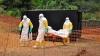 AVERTISMENT: Epidemia de Ebola este tot mai greu de ţinut sub control