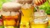 An nefast pentru apicultori: Recolta de miere a fost compromisă