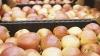 TENSIUNE în Uniunea Vamală: Rusia impune restricţii la importul de fructe şi legume din Belarus