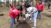 Tinerii comunişti au plantat stejari într-un parc din capitală. ''Cel politic să se usuce, iar cei adevăraţi să crească''