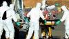 Necazul unora aduce bani altora. O companie vinde jucării de pluş ce imită aspectul virusului Ebola