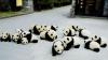 Sărbătoare mare la o grădină zoologică din China. Vizitatorii îşi bucură privirile cu ursuleţi panda