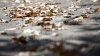 Avertizare meteorologică! Se anunţă Cod Galben de îngheţuri