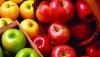 Rosselhoznadzor a întors în Belarus 19 tone de mere, motivând că fructele sunt moldoveneşti