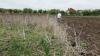 Ce decizie au luat fermierii din Dubăsari după întâlnirea cu vicepremierul pentru Reintegrare, Eugen Carpov