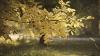 Soarele tomnatic şi timpul frumos a scos locuitorii Capitalei la plimbare: Savurăm minunăţia toamnei