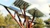 Invenţie inedită! Copacul viitorului va oferi umbră, Wi-Fi şi electricitate (VIDEO)