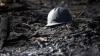 Accident într-o mină din România. Al doilea miner, în vârstă de 24 de ani, a murit pe patul de spital